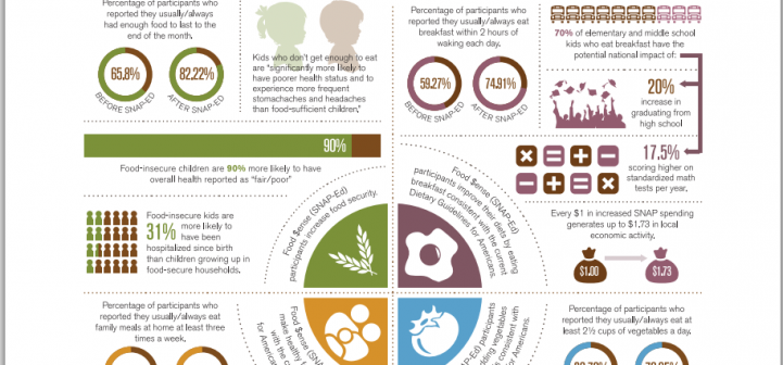 2013 Program impact report infographic